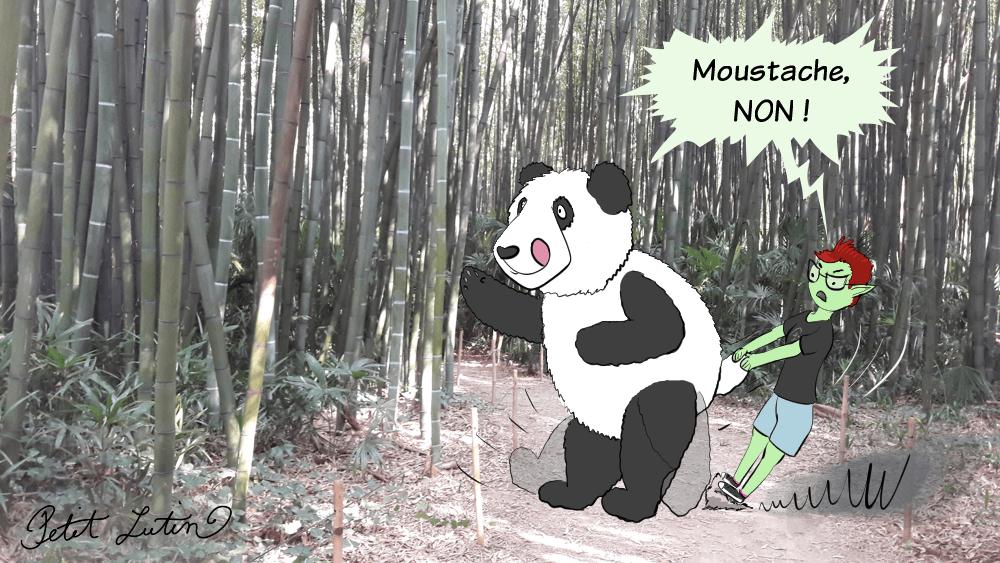 Photo de prairie de gros bambous. Au milieu sont dessinés Moustache et Petit Lutin. Moustache le panda veut manger tous les bambous mais Petit Lutin le retient fermement !