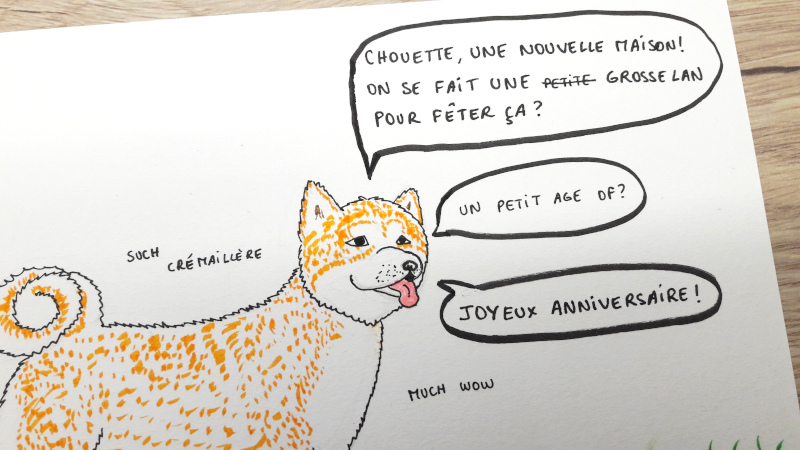Illustratiion d'un chien de race Akita Inu