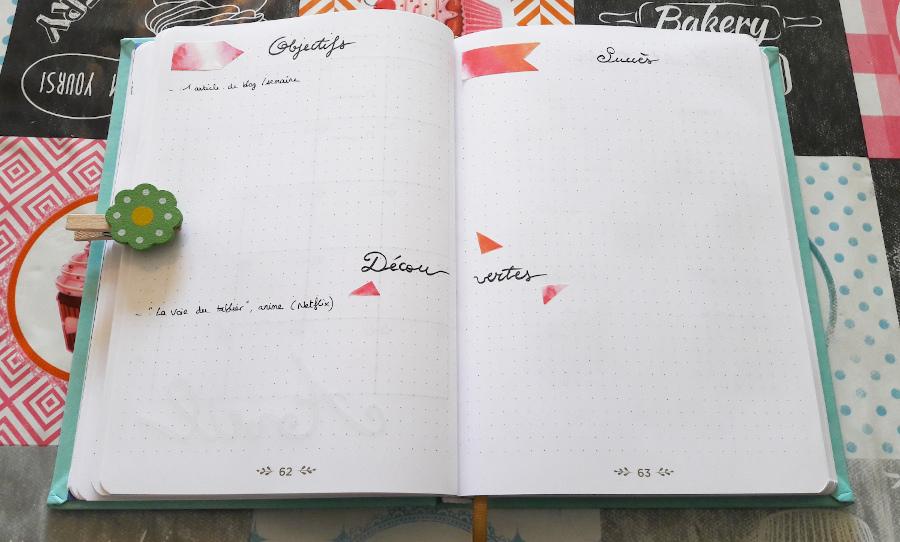 Belette journal : double page objectifs/succès/découvertes