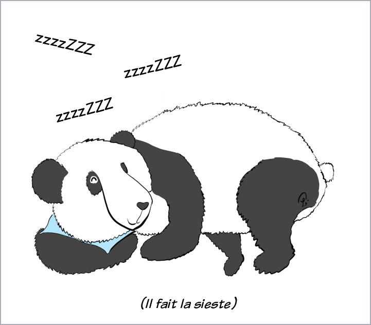 Case de BD : Moustache le panda est déjà en train de dormir, même qu'il ronfle. Il est précisé qu'il fait la sieste.