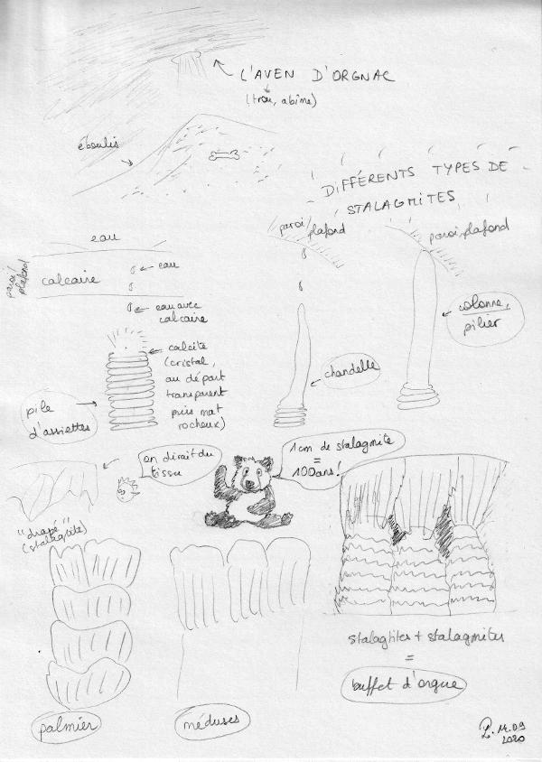 """Explication sur la formation de stalagmites : l'eau passe à travers la roche calcaire ce qui donne la formation de calcite. Selon comment l'eau tombe, les stalagmites sont en forme de piles d'assiettes, de chandelles, de palmiers, de méduses. Une fois qu'une chandelle a atteint le plafond de la grotte, on appelle cela une colonne. Si des stalagtites et des stalagmites se """"rencontrent"""" on parle de buffet d'orgue. Et le plus impressionnant : 1cm de stalagtite se forme en 100 ans !"""