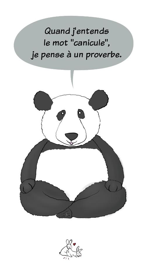 Case de BD : Moustache le panda dit 'Quand j'entends le mot canicule, je pense à un proverbe'. Les lapins font des galipettes.