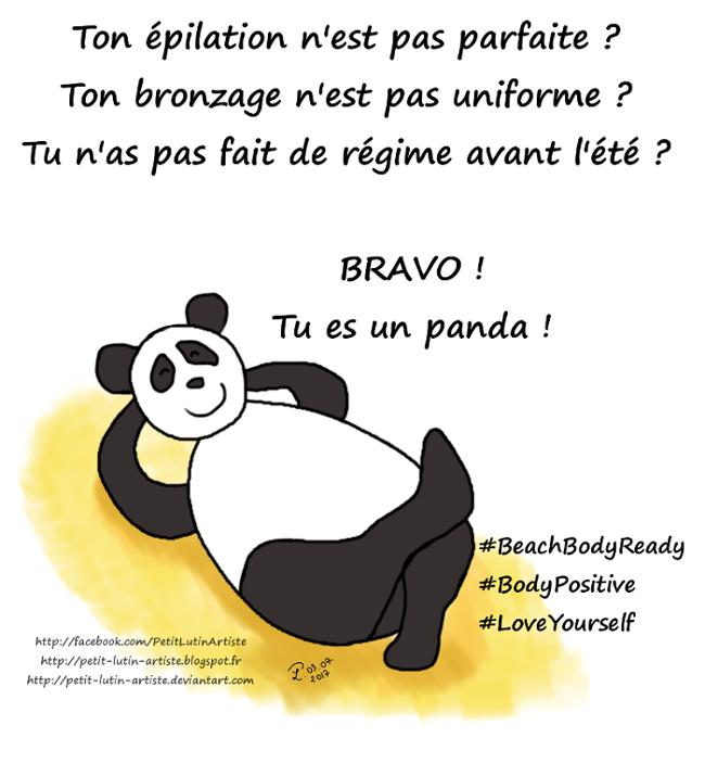Case de BD de 2017 : Moustache le panda est sur la plage et dit 'Ton épilation n'est pas parfaite ? Ton bronzage n'est pas uniforme ? Tu n'as pas fait de régime avant l'été ? bravo ! Tu es un panda !'